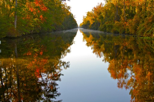 Fall Dismal Swamp Canal