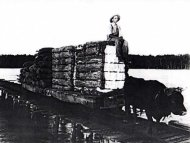 Unloading Cotton at Old Trap Wharf
